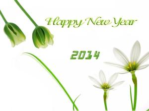 happy-new-year-wallpapers7-2014